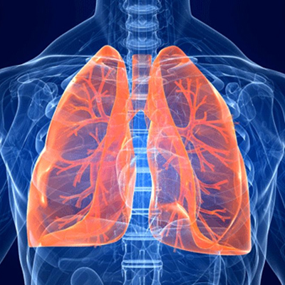 Respiratory Group